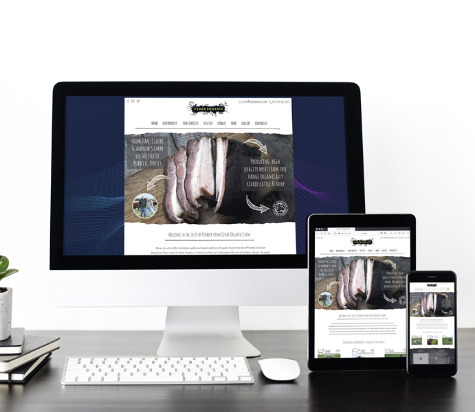 WordPress web design in Dorset.
